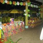 decoração-festa-havaiana--5