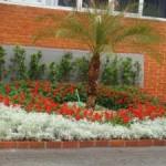 jardinagem-e-paisagismo-2