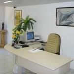 decoracao-de-escritorios-com-plantas