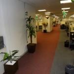 decoracao-de-escritorios-com-plantas-3