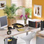 decoracao-de-escritorios-com-plantas-4