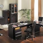 decoracao-de-escritorios-com-plantas-9