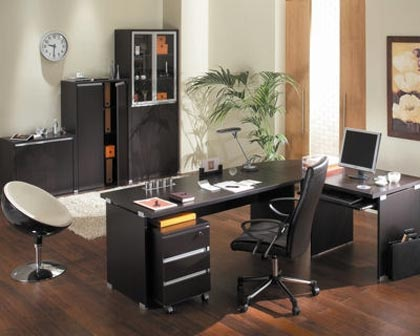 d coration de la maison idee deco bureau professionnel. Black Bedroom Furniture Sets. Home Design Ideas