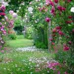 Decoração de Jardins Pequenos e Grandes, Dicas e Fotos
