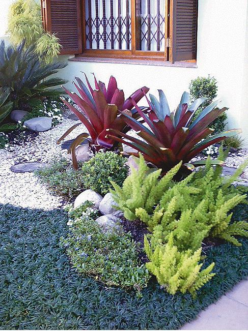 faça o que está a seu alcance para poder desfrutar de um belo jardim