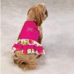 roupas-para-cachorros