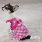 roupas-para-cachorros-4