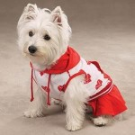 roupas-para-cachorros-6