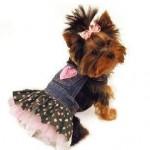 roupas-para-cachorros-8