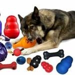Dicas de Brinquedos para Animais