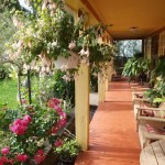 decoracao-de-jardins-externos-5