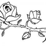 desenhos-de-flores-para-imprimir-e-colorir-6