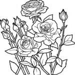 desenhos-de-flores-para-imprimir-e-colorir-7
