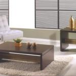 Modelos de Mesas de Centro para Sala Pequena